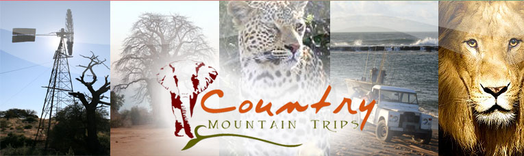 South African Tour Operators Logo Image